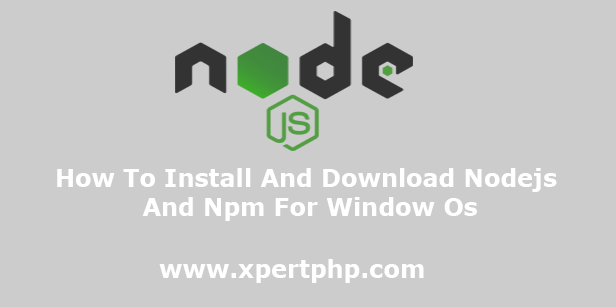 How To Install And Download Nodejs And Npm For Window O