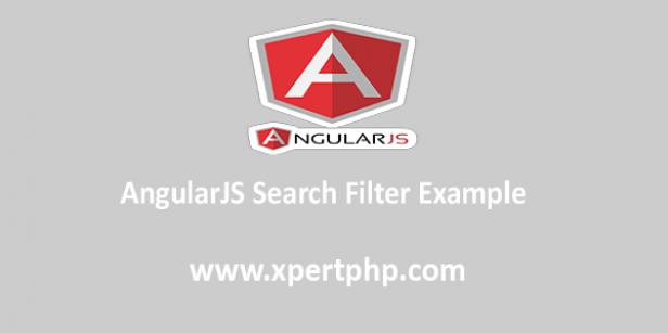 AngularJS Search Filter Example