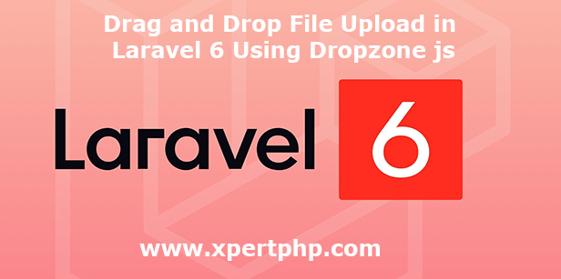 Drag and Drop File Upload in Laravel 6 Using Dropzone js