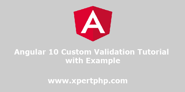 Angular 10 Custom Validation Tutorial with Example